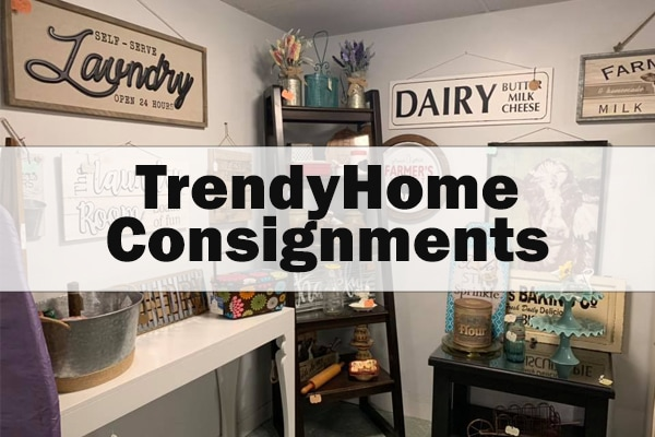 trendy home consignments by Earth Safe Finishes